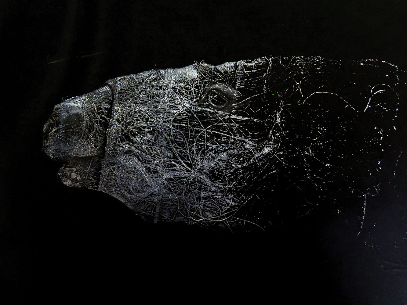 Pedro Pulido: El compromiso de la estética funcional