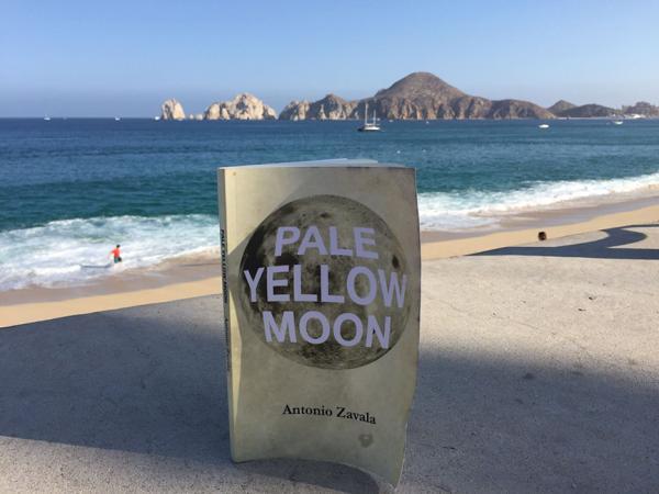 Viaje a Pale Yellow Moon de Antonio Zavala